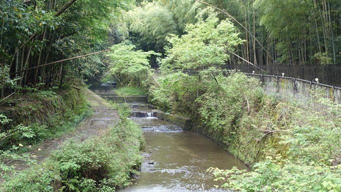 山の神さん 西芳寺川No2