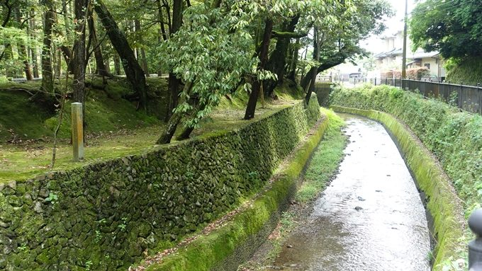 山の神さん 西芳寺川No1