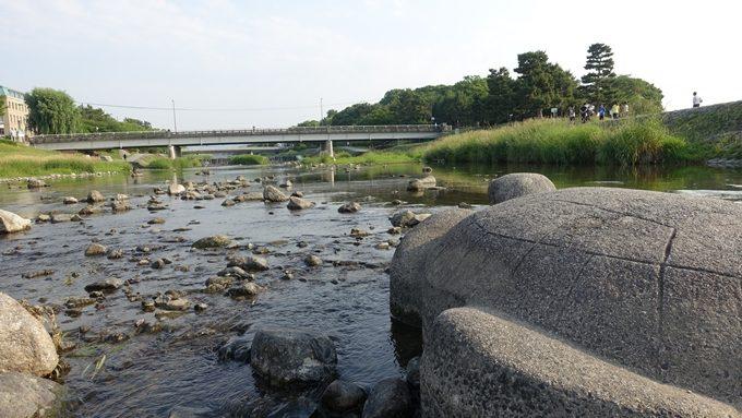 鴨川デルタ No8