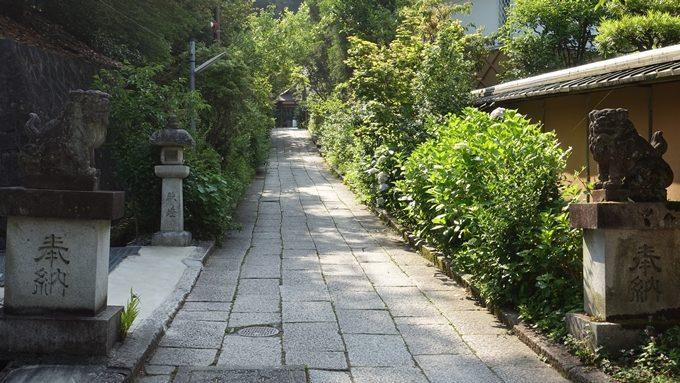 大豊神社 参道