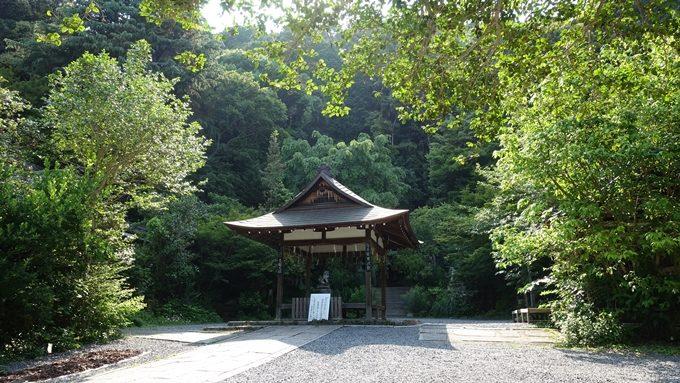 大豊神社 拝殿