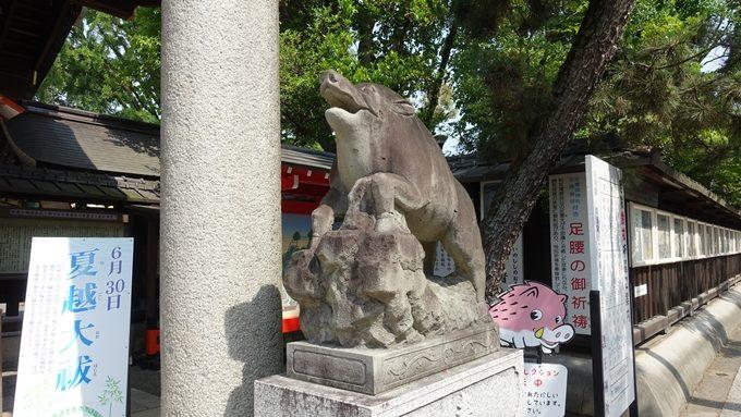 護王神社 狛猪No2