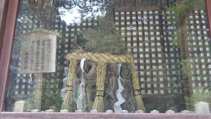 八大神社 初代一乗寺下り松