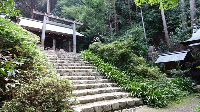 日向大神宮 内宮階段No2
