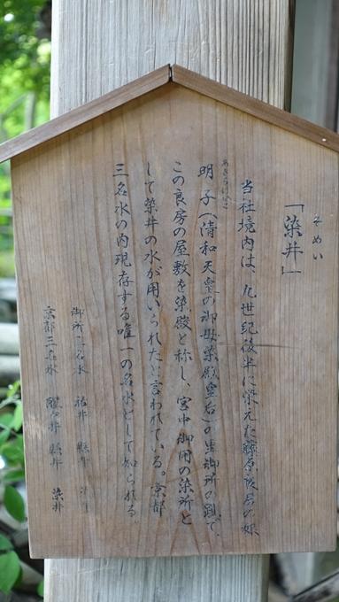 梨木神社 染井No2