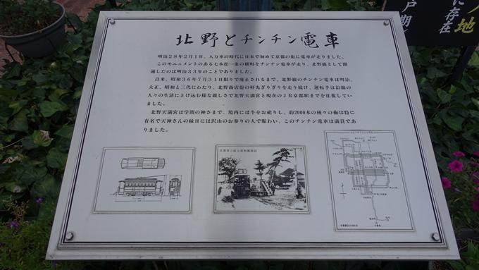 北野下り松 No4