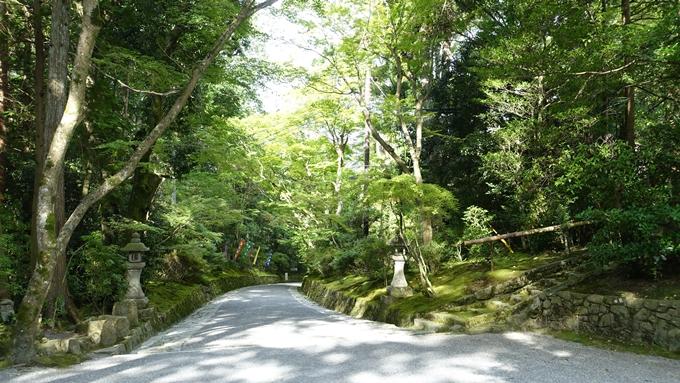 赤山禅院 参詣道