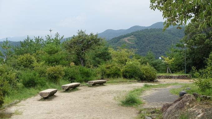 船岡山 No7