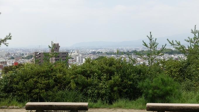 船岡山 No8
