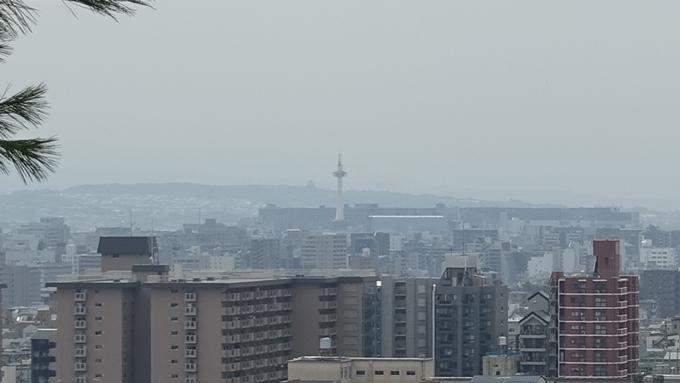 船岡山 No11