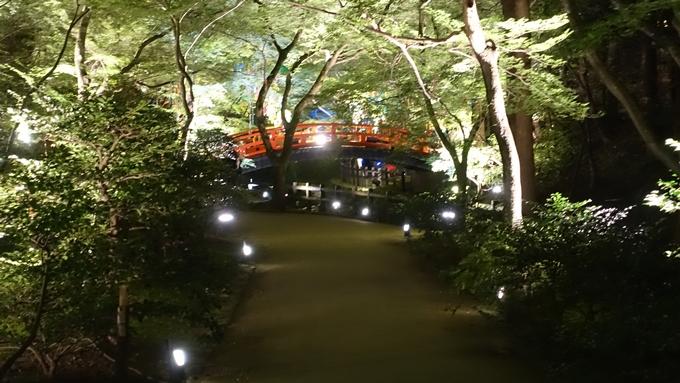 京の七夕 北野No22