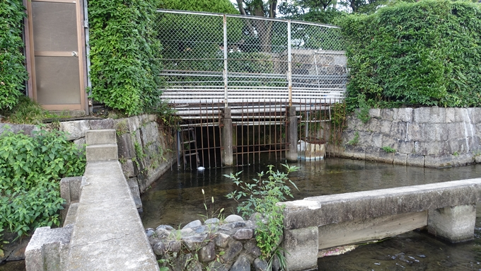 高瀬川取水口 No9