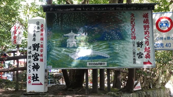 野宮神社 竹林の小径No3
