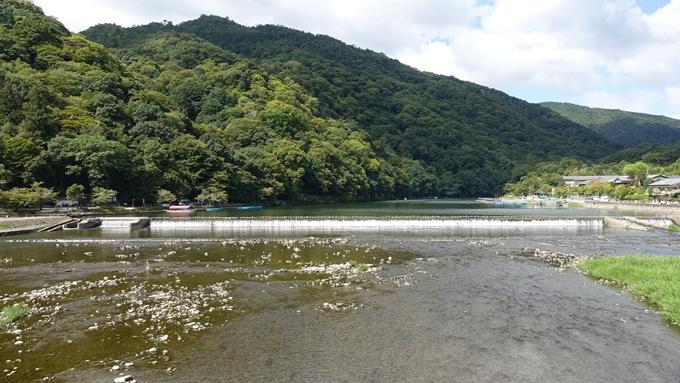 嵐山公園・渡月橋・大堰神社 No10