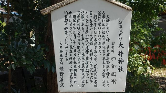 嵐山公園・渡月橋・大堰神社 No17