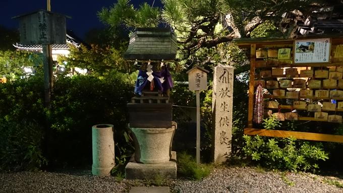 神泉苑夜景 No3