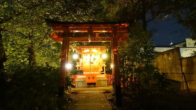 神泉苑夜景 No4