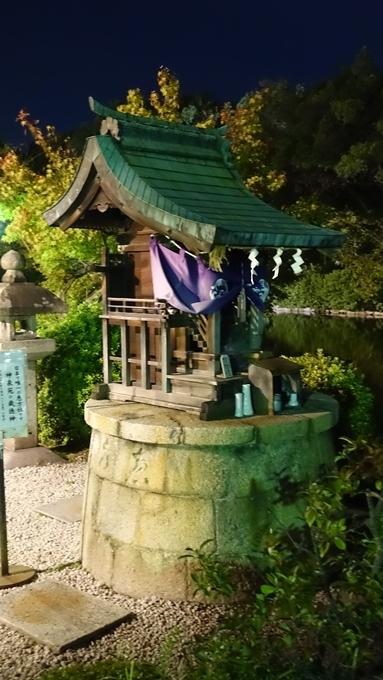神泉苑夜景 No8