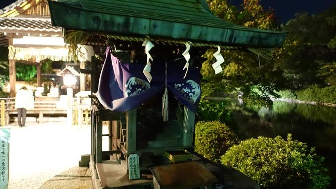 神泉苑夜景 No9