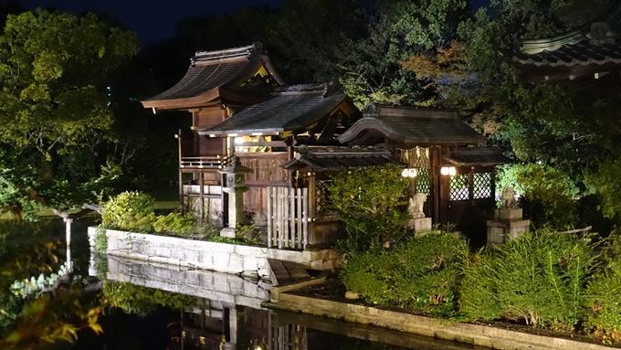 神泉苑夜景 No12