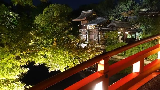 神泉苑夜景 No14