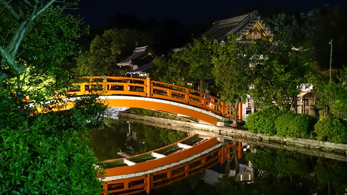 神泉苑夜景 No15