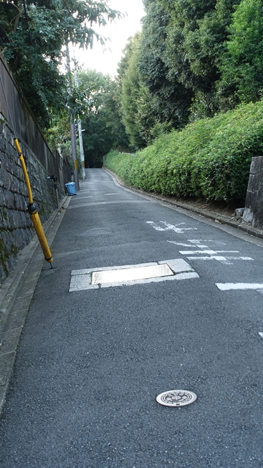 吉田山公園 No2