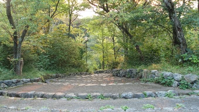 吉田山公園 No3