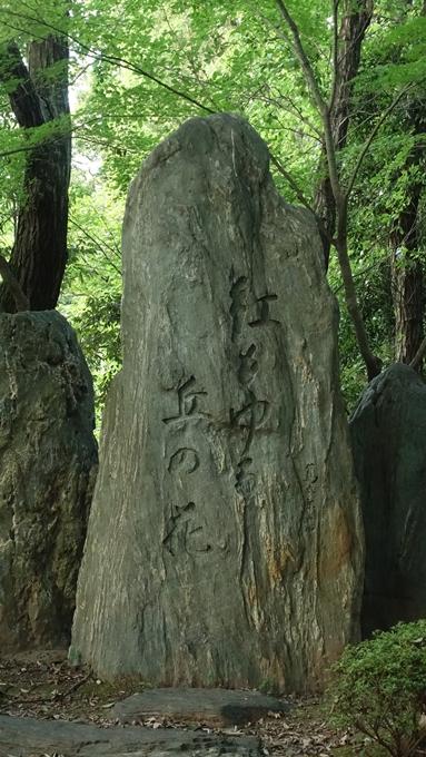吉田山公園 No8