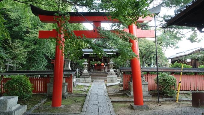 竹中稲荷神社 拝殿前No1