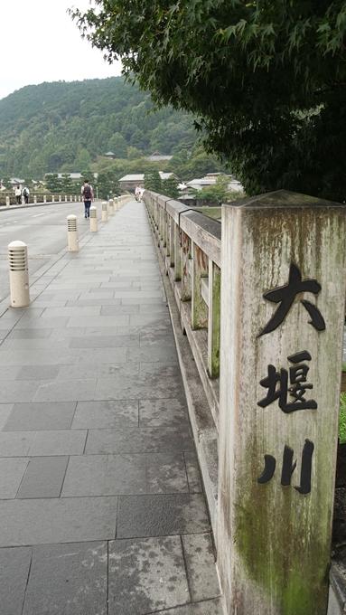 葛野大井 No5