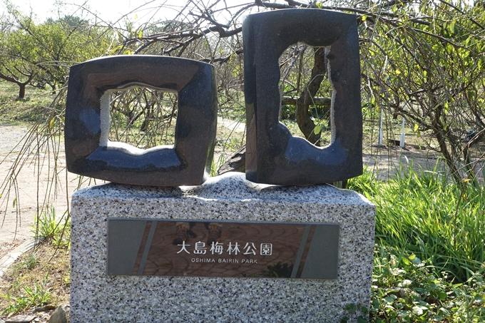 佐久島 No028