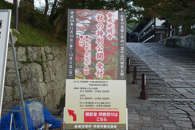 京都紅葉速報_04 No2