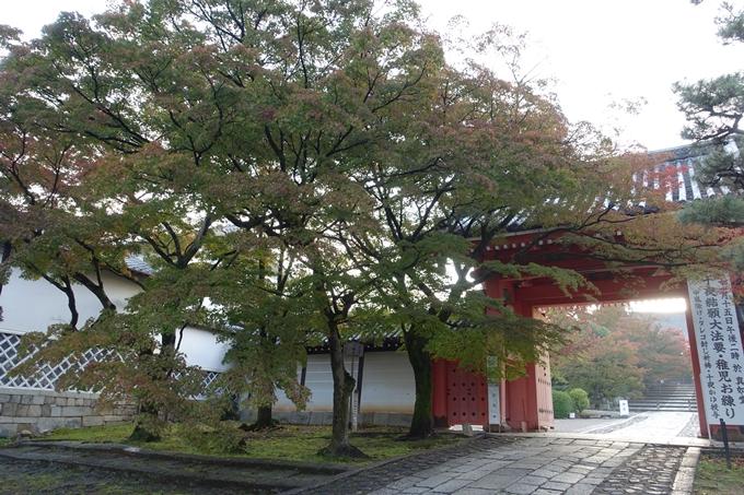 京都紅葉速報_04 No14