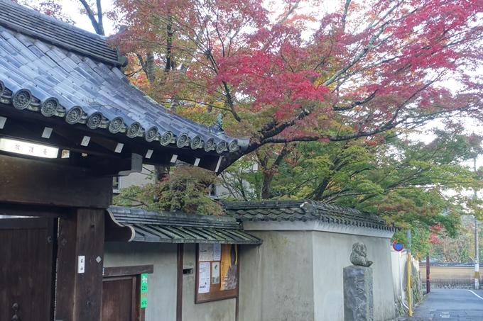 京都紅葉速報05 No14
