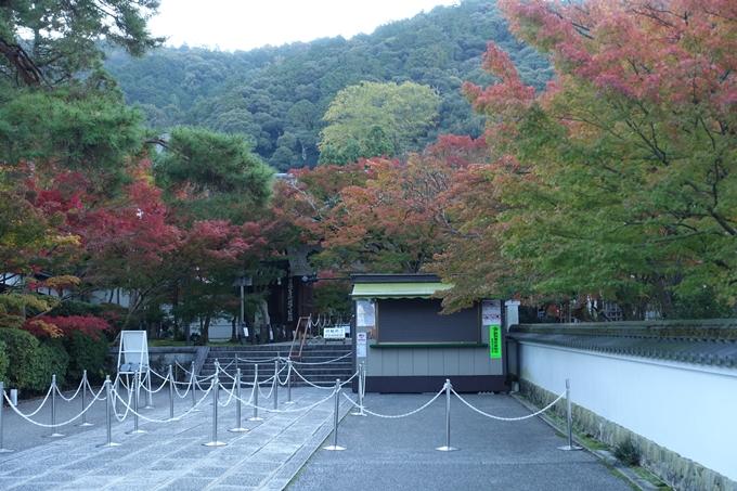 京都紅葉速報05 No19
