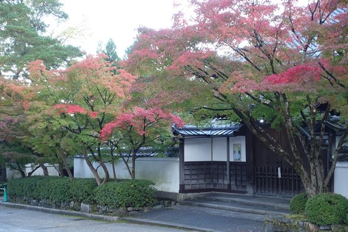 京都紅葉速報05 No20