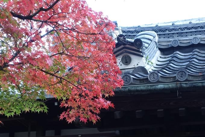 京都紅葉速報05 No21
