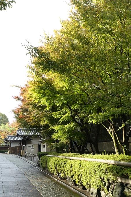 京都紅葉速報_06 No24