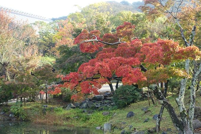 京都紅葉速報_06 No26