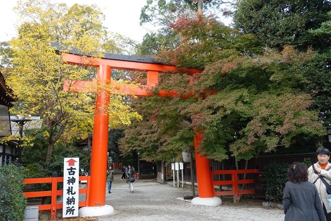 京都紅葉速報_07 No14