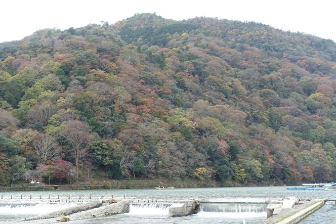 京都紅葉速報_08 No3