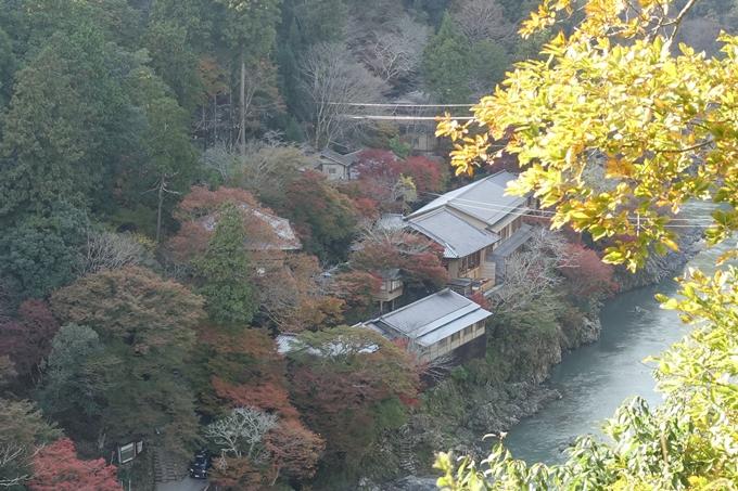 京都紅葉速報_08 No12