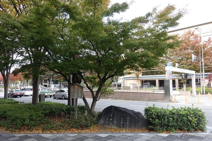 御池通り・紅葉 No3