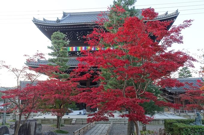 京都紅葉速報_10 No12