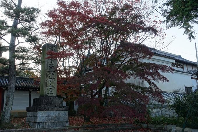 京都紅葉速報_10 No27