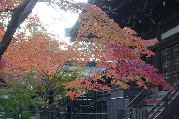 京都紅葉速報_10 No38