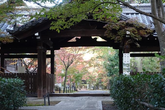 京都紅葉速報_10 No41