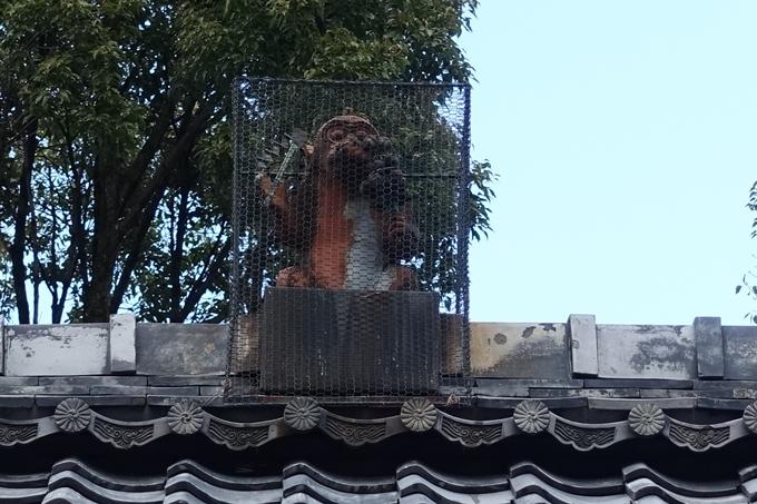 赤山禅院・紅葉 No11