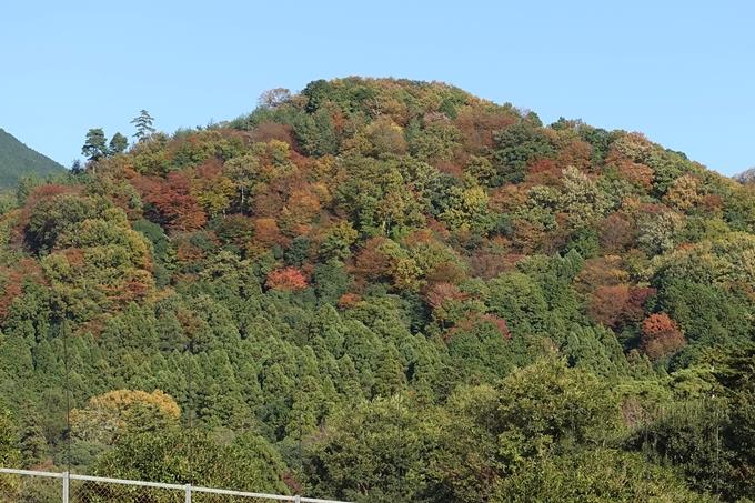 鷺森神社 No2